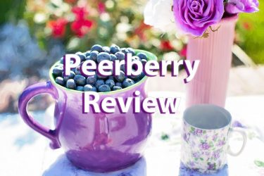 peerberry review